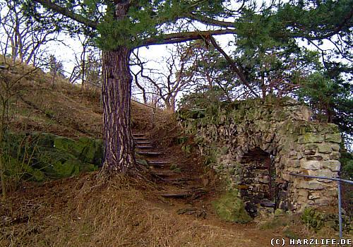 Burgruine auf dem Langen Stein