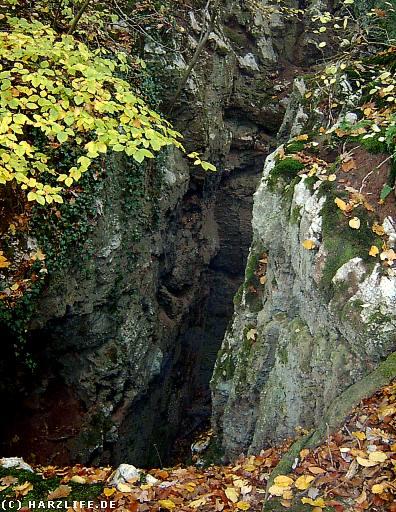 tiefe Felsspalte am Karstwanderweg