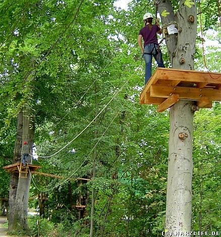 Freizeit und Sport im Harz - Kletterwald im Bodetal in Thale