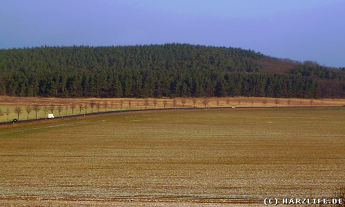 Osterholz - Blick zum Tyrstein