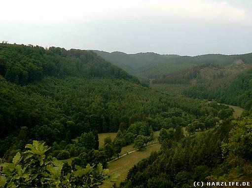 Blick auf das Tal der Selke nahe der Burg Falkenstein