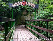 Die Teufelsbrücke im Bodetal