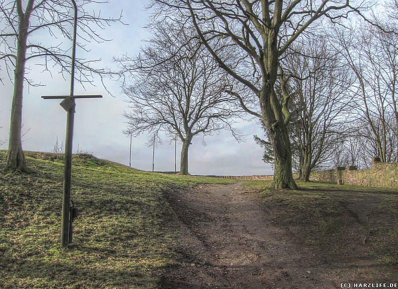 Burgruine Bornstedt - Das Gelände der Kernburg mit Aussichtspunkt