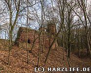 Die Burgmauer der Vorburg und der Burggraben