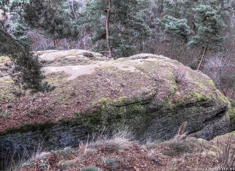 Tiefe Felsspalte an der Teufelskanzel