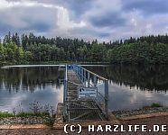 Neuer Teich