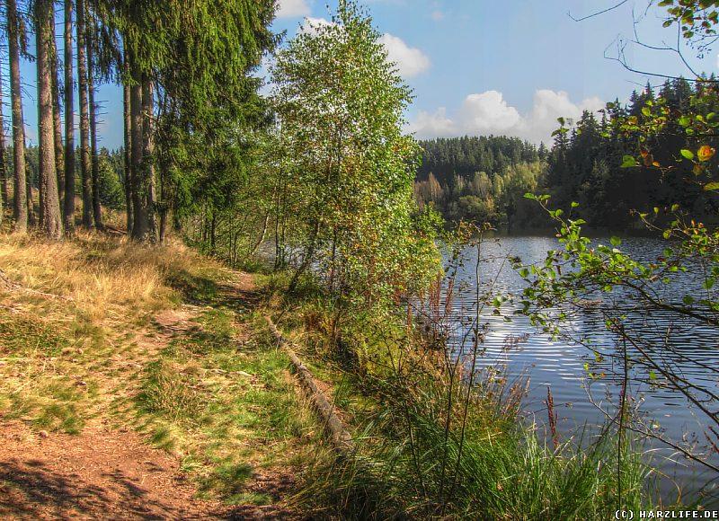 Rappbodevorsperre - Der Wanderweg am Seeufer im Allerbachtal