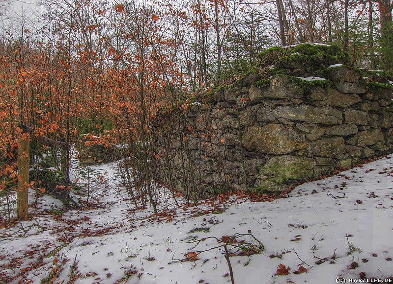 Ruinen des Klosters Alt-Michaelstein am Volkmarskeller