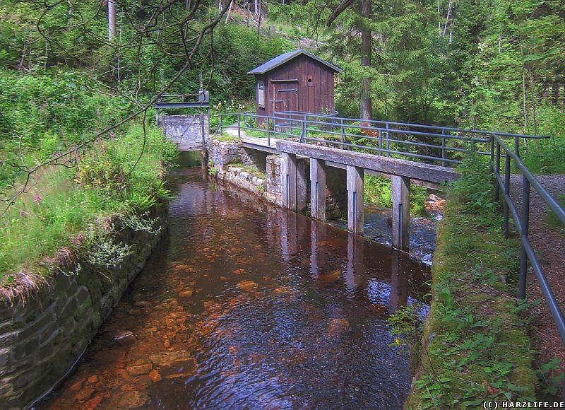 Die Große Oker trifft auf den Dammgraben