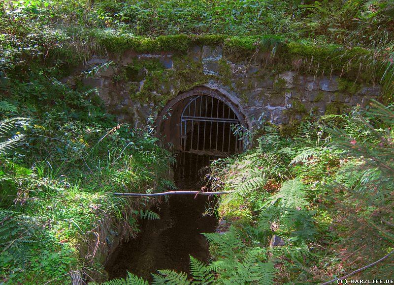 Das Einlaufmundloch des Coventhaier Wasserlaufes