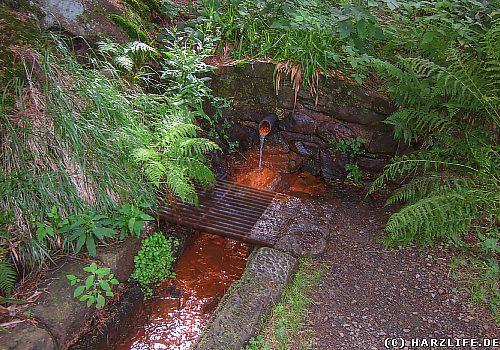 Die Eisenquelle am Dammgraben