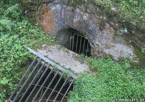 Der Franz-Auguster-Wasserlauf