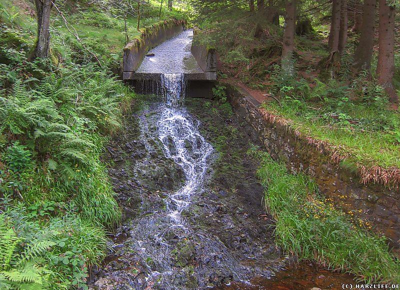 Der Gerlachsbacher Damm