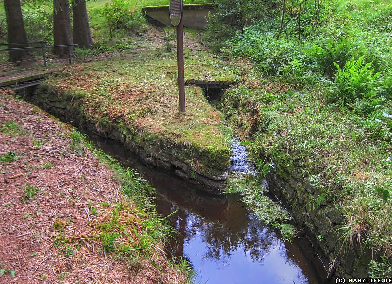 Die Einmündung des Morgenbrodstaler Grabens in den Dammgraben