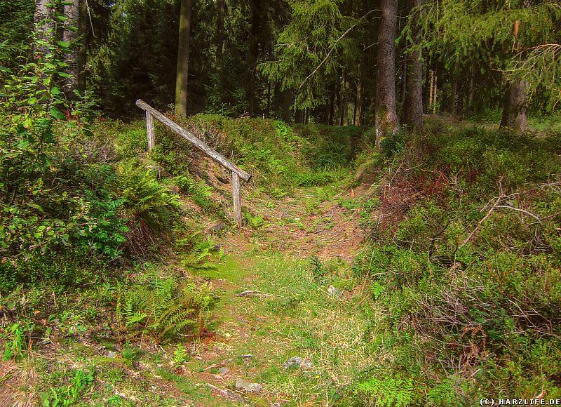Kleine Treppe am Wasserwanderweg Alter Dammgraben