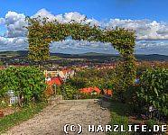 Berggarten - Hoppelberg