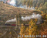 Die Harzquerbahn