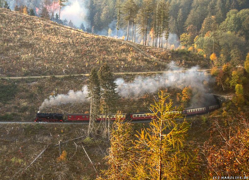 Die Harzquerbahn verläßt den Drängetaltunnel
