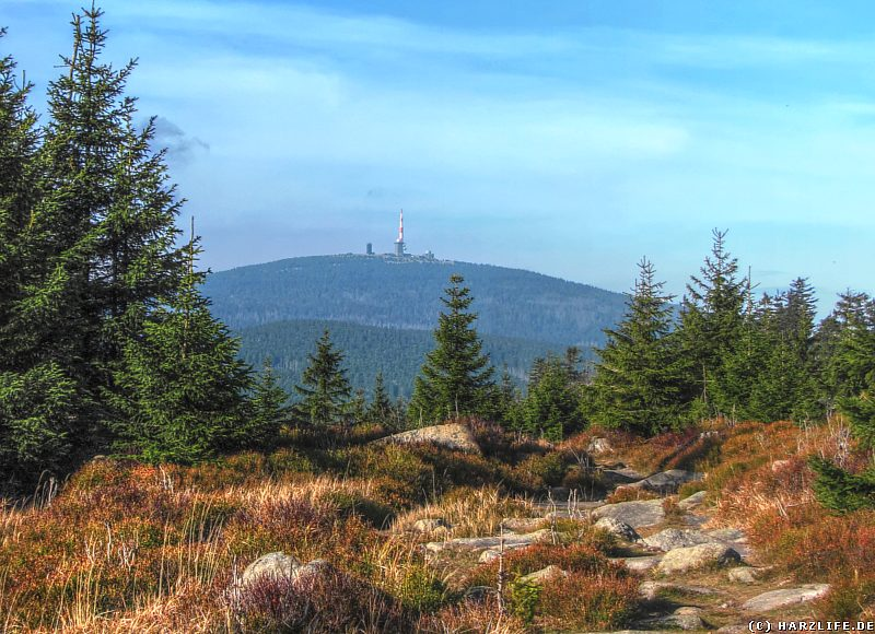 Wanderweg auf dem Hohnekamm mit Ausblick zum Brocken