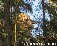 Ein riesenhaftes Felsengesicht hinter Bäumen