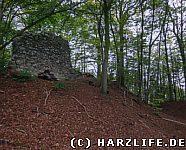 Burggraben und Mauerrest