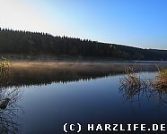 Morgennebel Mandelholzstausee