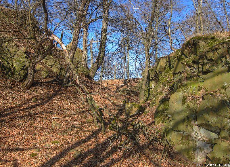 Ein künstlicher Felsdurchbruch östlich der Kernburg der Burgruine Alter Falkenstein
