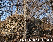 Blick zur Ruine Heinrichsburg