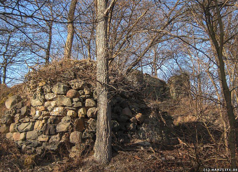 Blick vom Wanderweg zu den Mauern der Burgruine Heinrichsburg