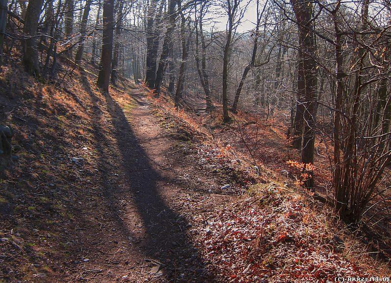 Burgruine Anhalt - Aufstieg zur Burg mit Resten des Graben-Wall-Systems