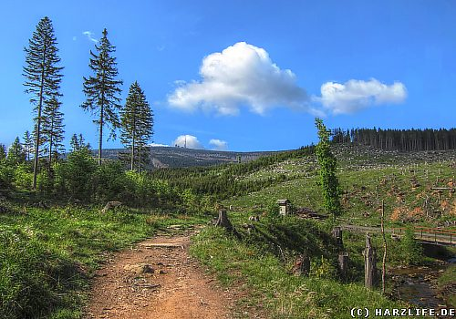 Auf dem Heinrich-Heine-Wanderweg