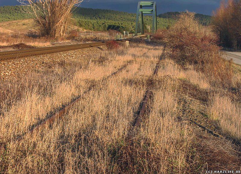 Ein teilweise zugewachsenes altes Gleisstück nordöstlich von Blankenburg
