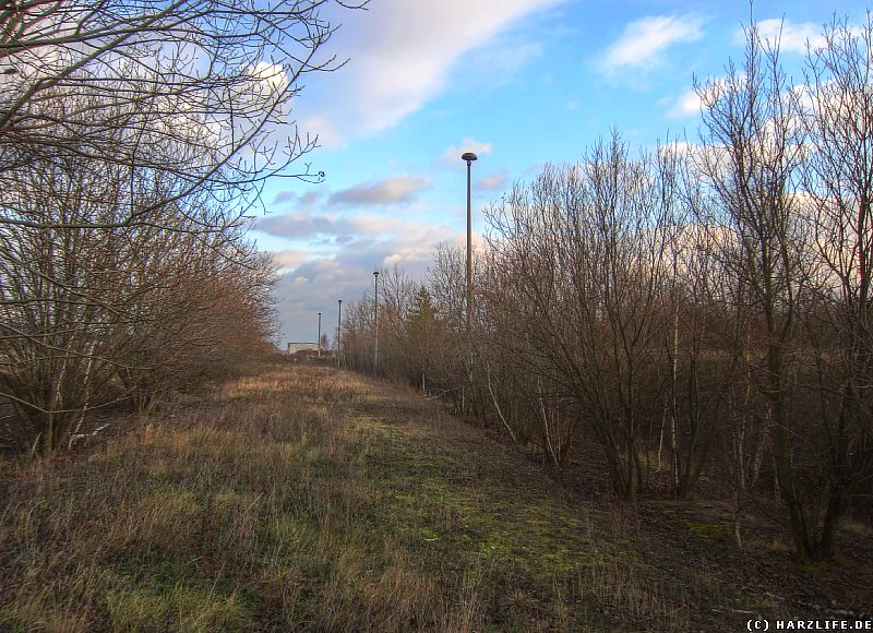 Eisenbahnzubringer zum Heizkraftwerk in Thale/Nord
