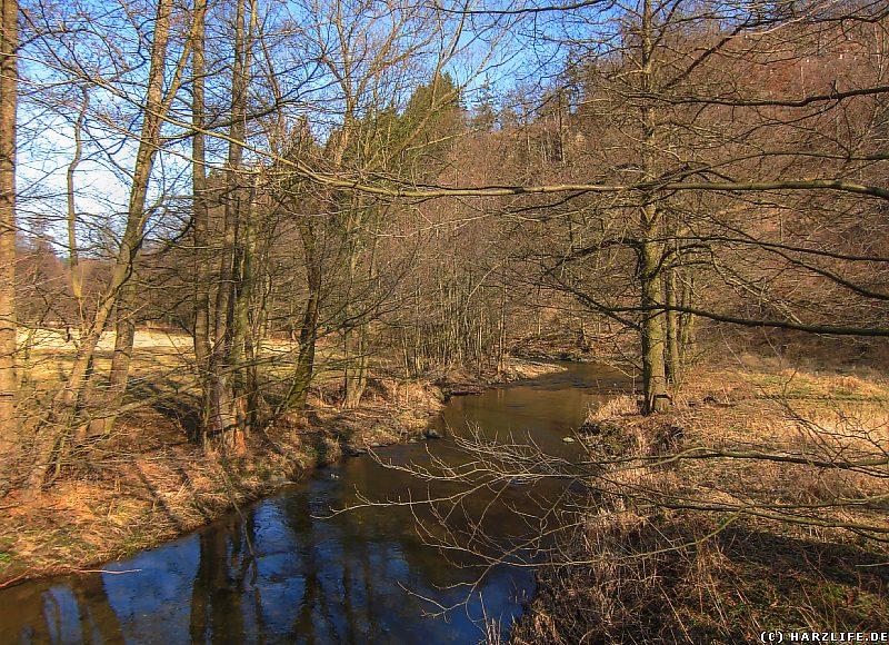 Bilder aus dem Selketal - Die Selke bei Bröhms Brücke