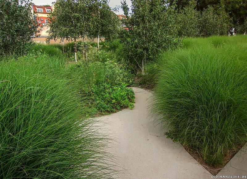 Das sensorische Labyrinth in Aschersleben im Bestehornpark