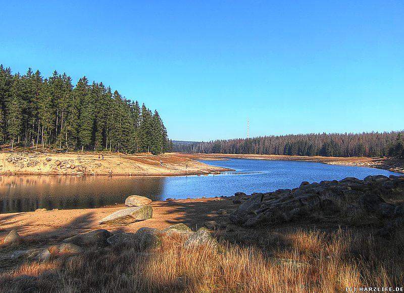 Niedrigwasser am Oderteich
