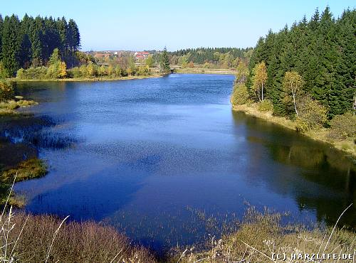 Der Obere Pfauenteich bei Clausthal-Zellerfeld im Harz