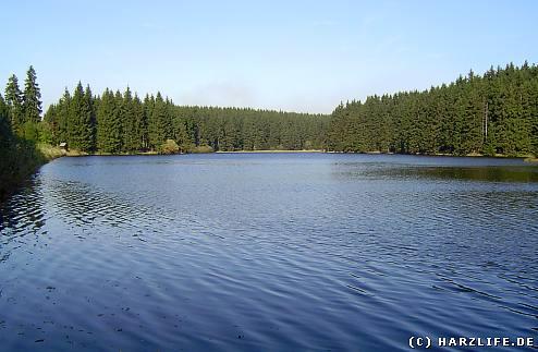 Der Bärenbrucher Teich bei Buntenbock
