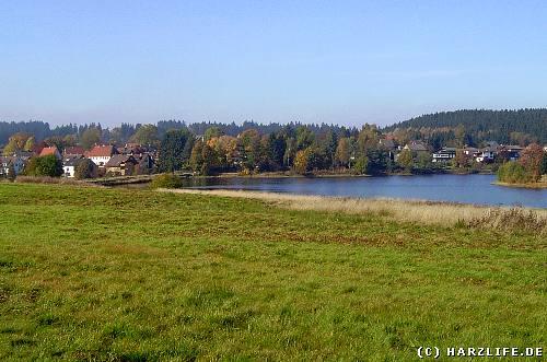 Blick auf Buntenbock im Harz
