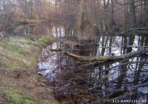 Die Waldmühle - eine ehemalige Ölmühle - befindet sich unweit des Klosters Michaelstein bei Blankenburg am Harz