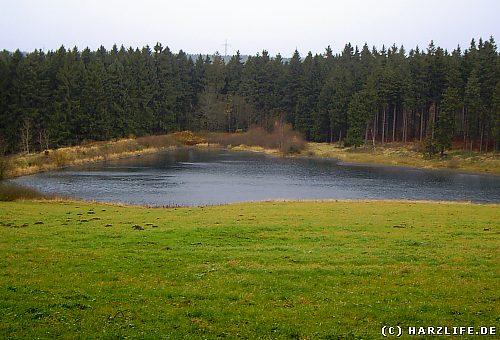 Schröterbacher Teich