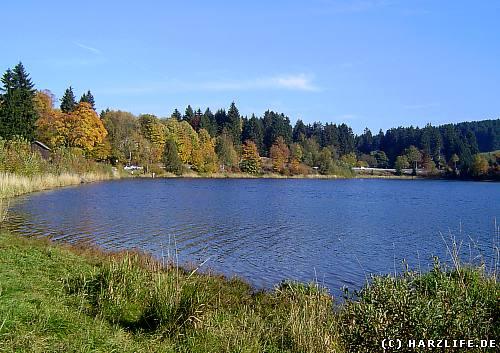 Der Stadtweger Teich liegt direkt am nördlichen Stadtrand von Clausthal-Zellerfeld