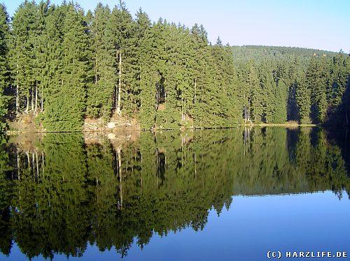 Der Untere Schalker Teich