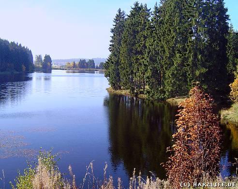 wandern im Harz - Auf dem Wasserwanderweg Buntenbocker Teiche