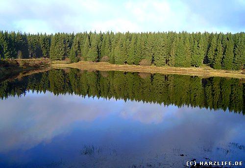 Der Zankwieser Teich