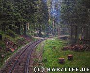 Eine Fahrt mit der Brockenbahn