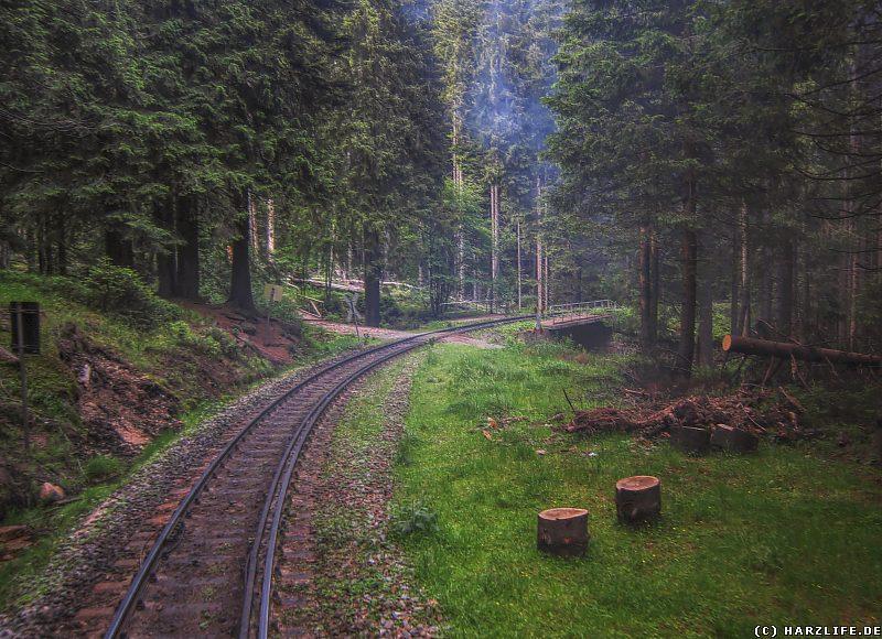 Der Bahnübergang am Eckerloch