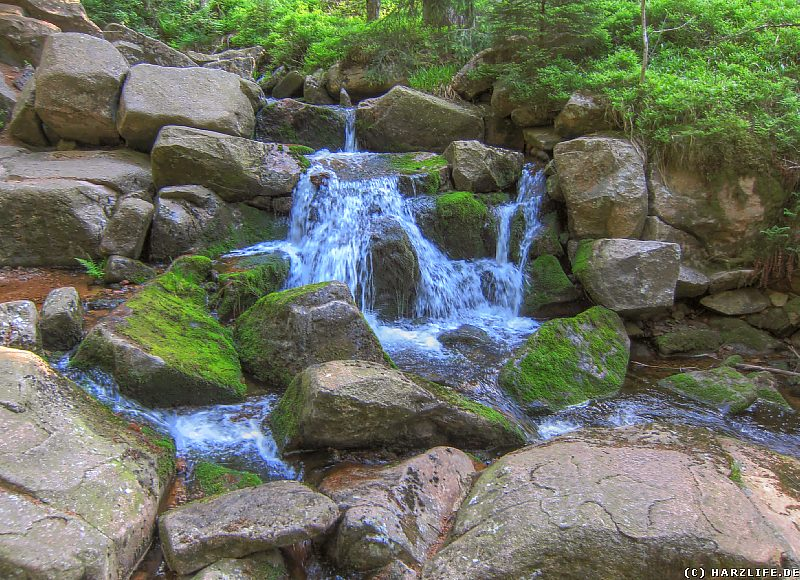 Der Obere Bodewasserfall im Frühsommer