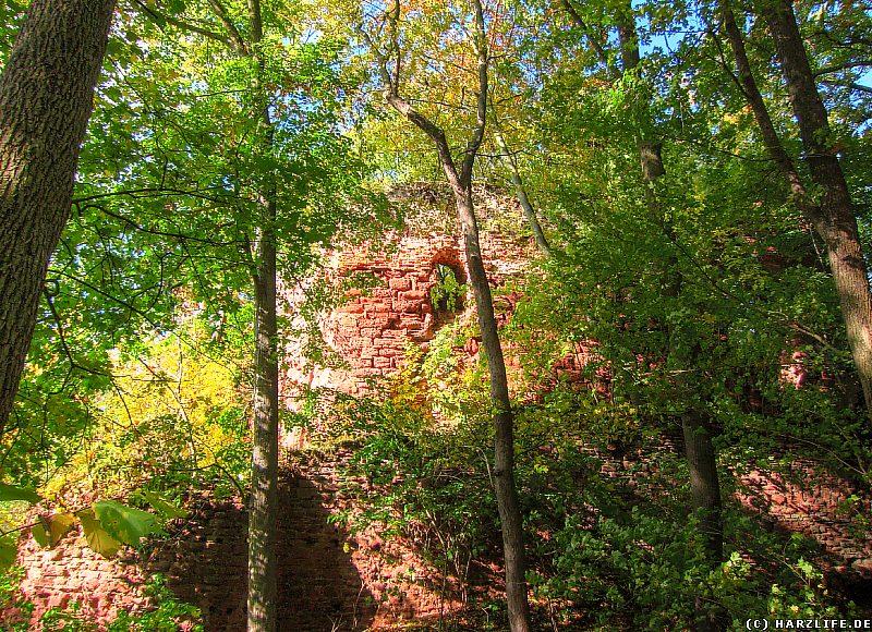 Burgruine Grillenburg - Blick von Südosten auf die Kernburg