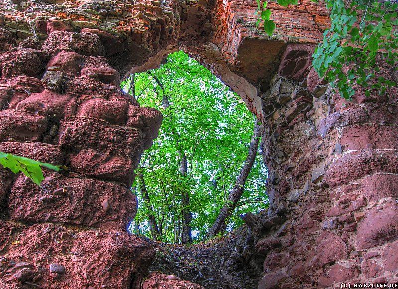 Burgruine Grillenburg - Mauerdurchbruch an der Palasmauer